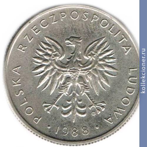 Сколько стоит 10 злотых 1988 года сколько стоит 1 копейка 1936 года цена